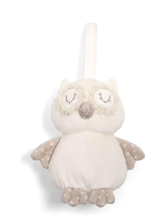 The Sleepy Heads - Owl image number 1