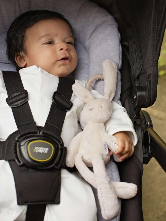 Mini Bunny image number 3
